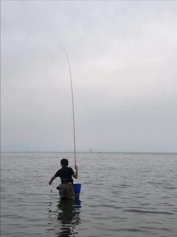 琵琶湖コアユ釣り はままつ方式